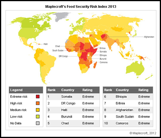 Population Simulation Model – Food Security Risk Index